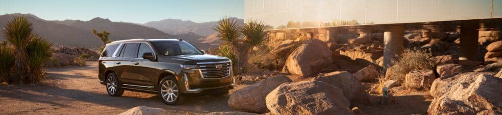 Learn More About The 2021 Cadillac Escalade