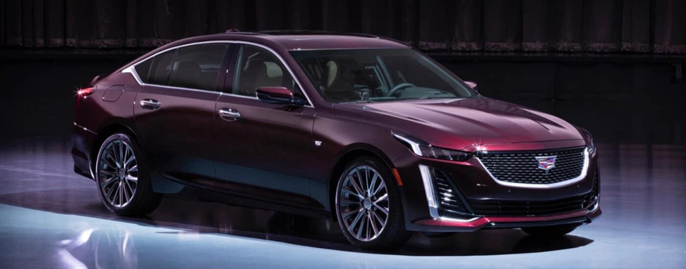 Maroon Cadillac